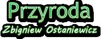 Zbigniew Ostaniewicz - Fotografia przyrodnicza